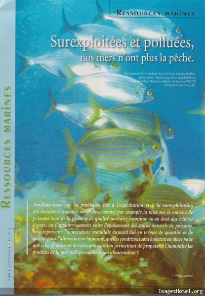 Etat des mers 1_5