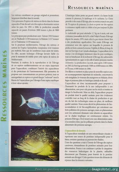 Etat des mers 7_1
