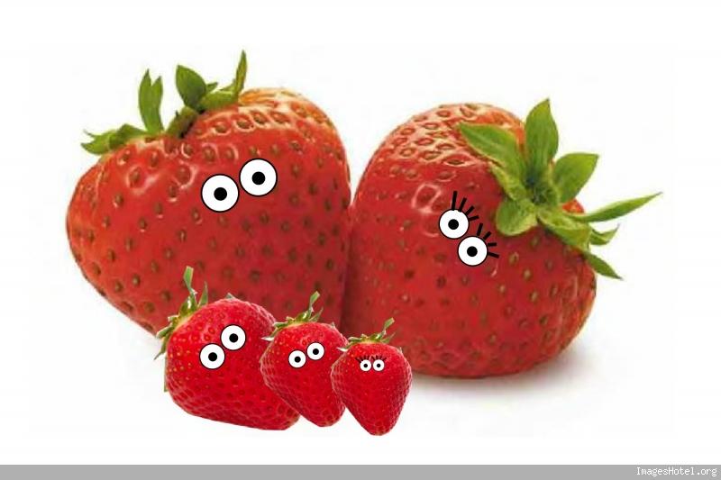 http://www.imageshotel.org/images/Tarulympique/fraises.jpg
