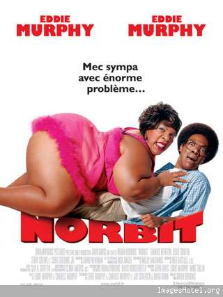 norbit xvid avi (phoenix tk) preview 0