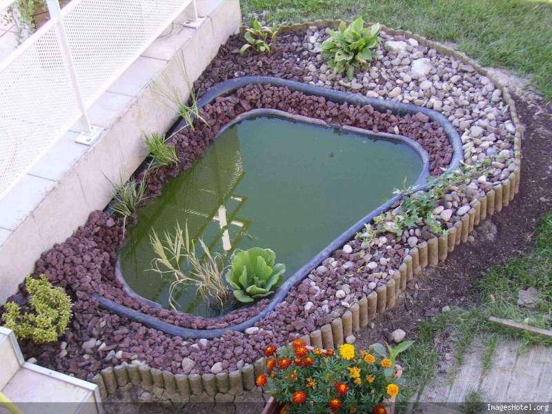Nature bassin la mare et le bassin de jardin naturel afficher le sujet conseil pour - Filtre bassin canard montpellier ...